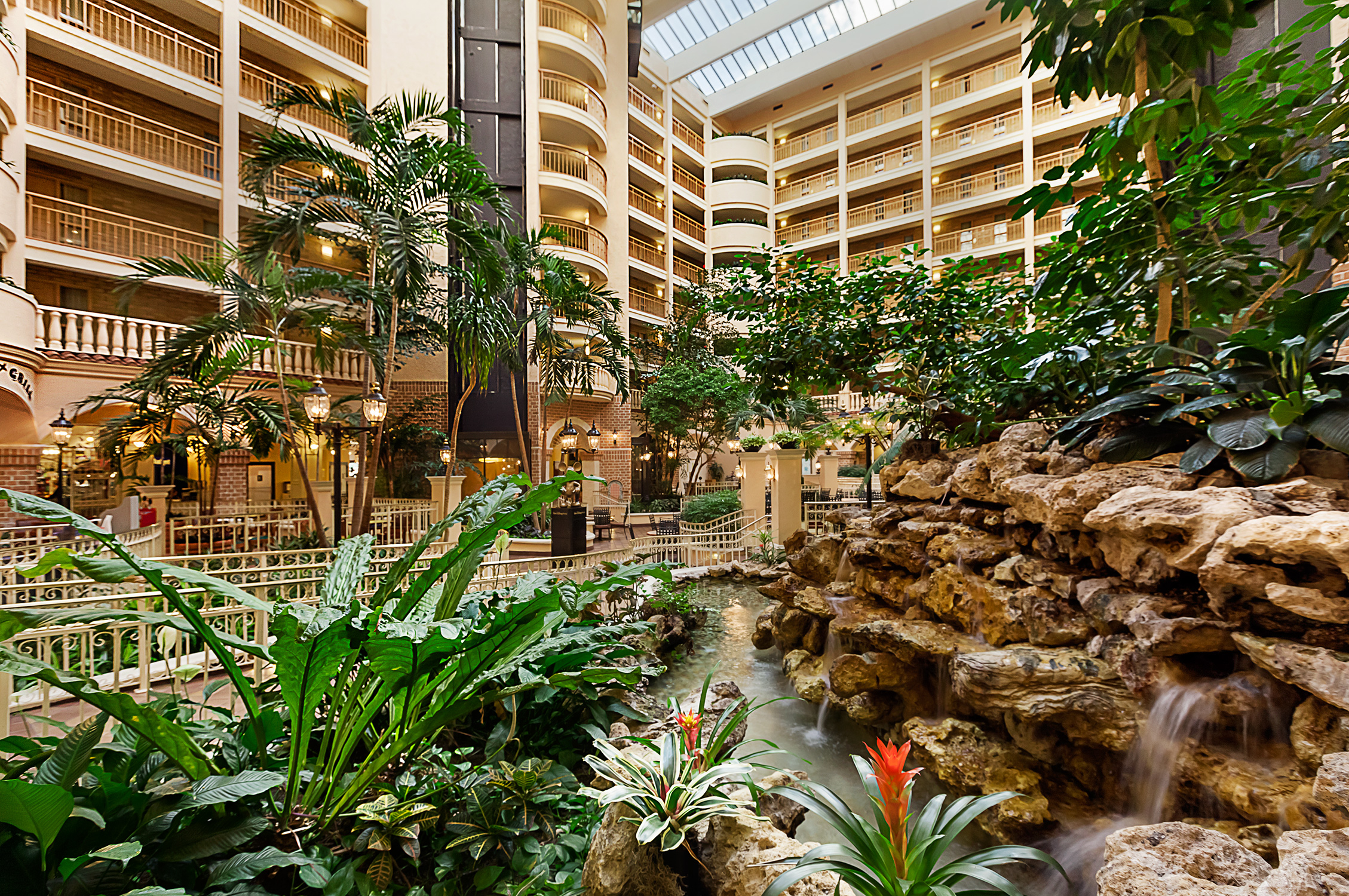Embassy Suites International Drive Offers a Pure Experience in Orlando