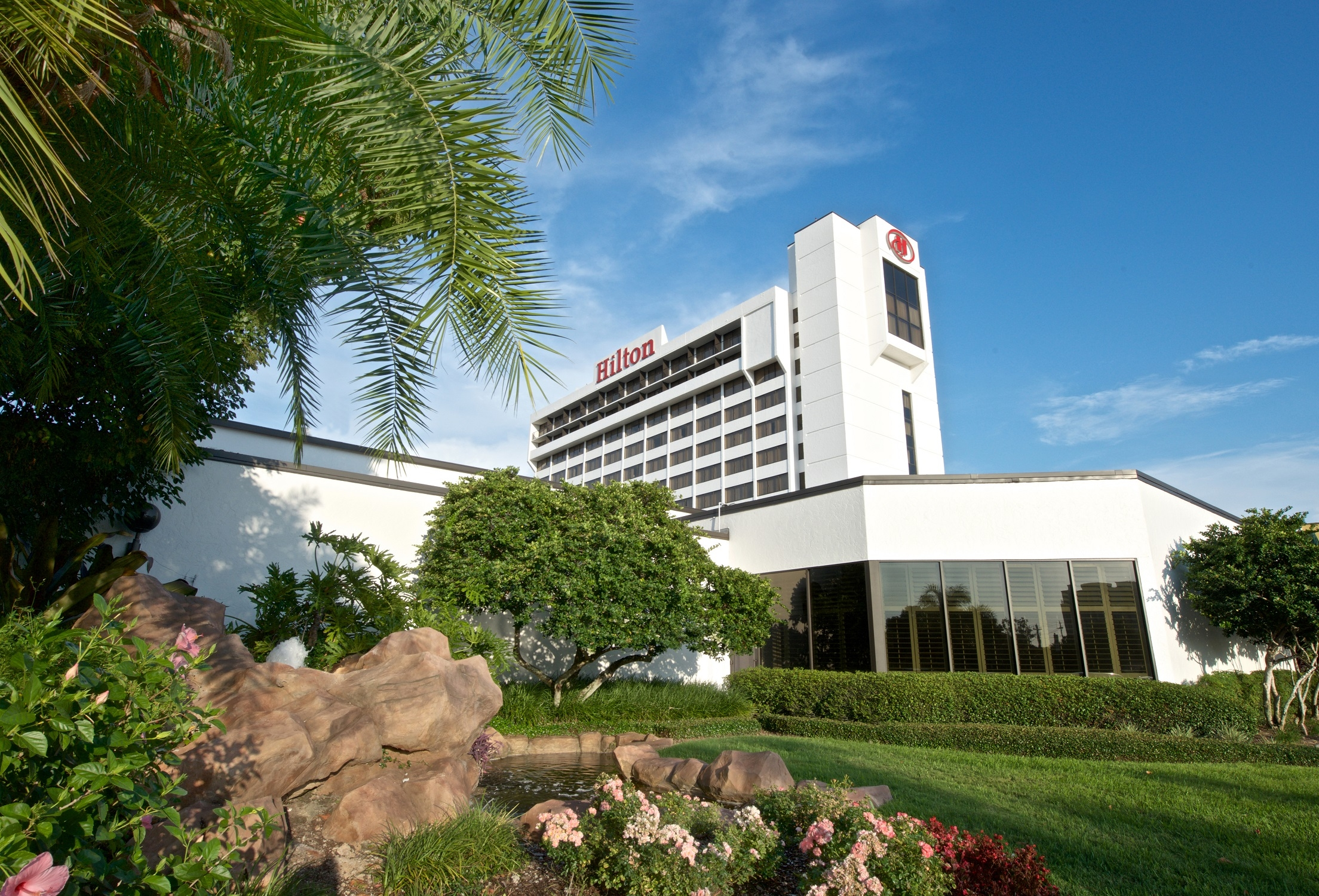 Rejuvenate with Pure Rooms at the Hilton Tampa Airport Westshore