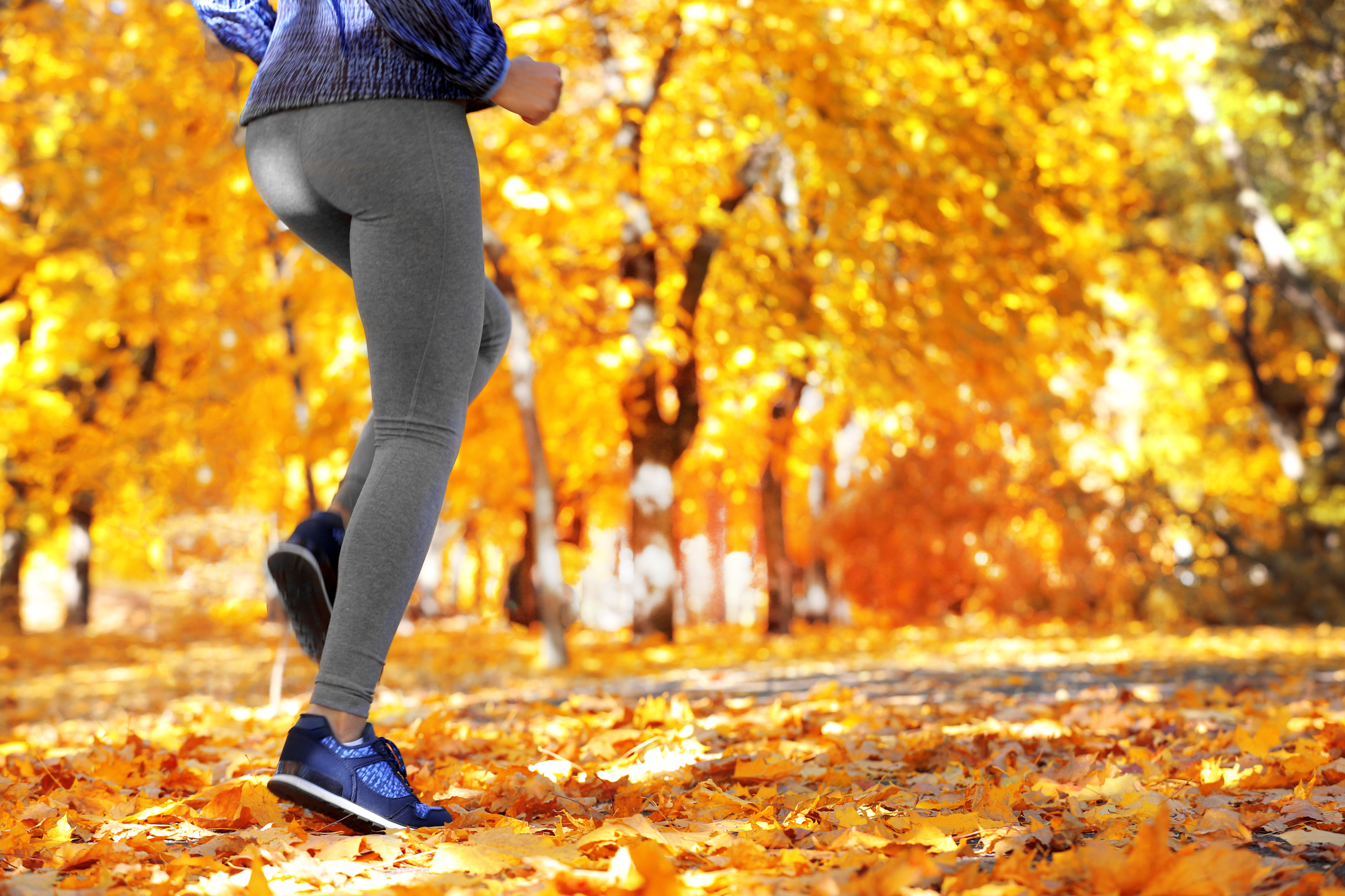 Our Best Wellness Tips for Fall