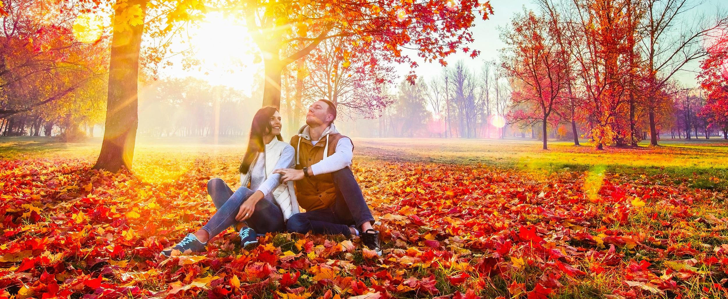 6 Pure Hotels for Enjoying Fall Foliage